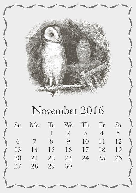 november-1735432_640
